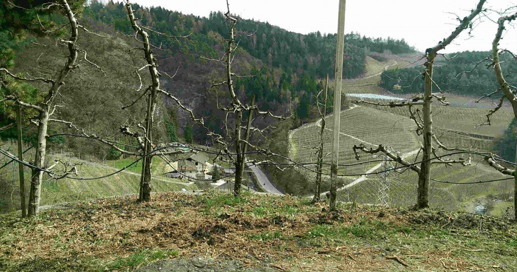 sentiero per il santuario di san romedio