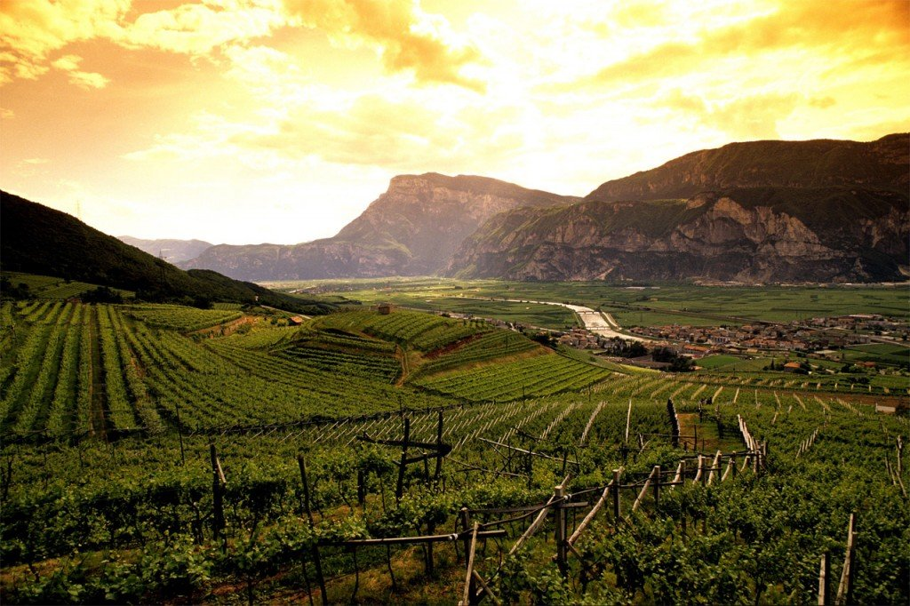valle dell'Adige ti amo trentino gemme di gusto 2015