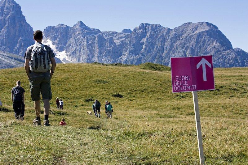 Verso il luogo dell'incontro per ascoltare Barbara Piancastelli nelle Dolomiti di Brenta, alcuni partecipanti camminano nei prati tra le Dolomiti di Brenta