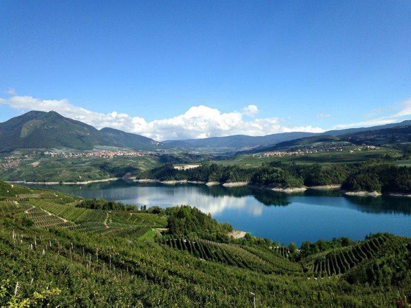 il panorama dall'alto dei meleti sul lago di Santa Giustina