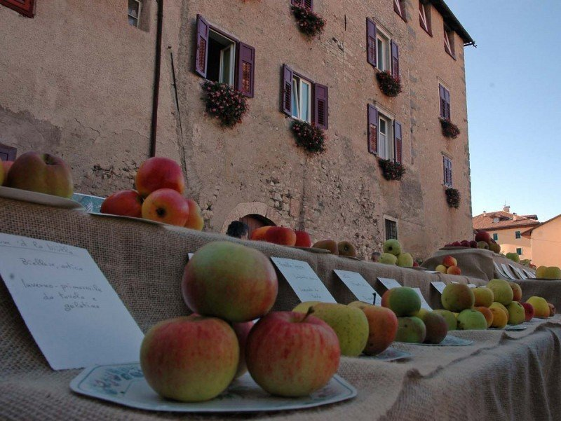 pomaria 2015 in val di non a celle