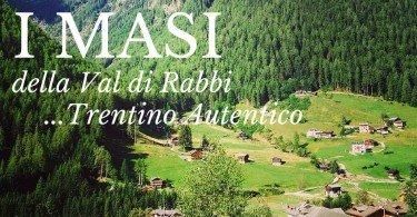i masi della val di rabbi trentino autentico ti amo trentino