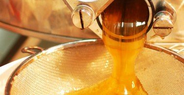la smielatura mmape museo dell'ape ti amo trentino