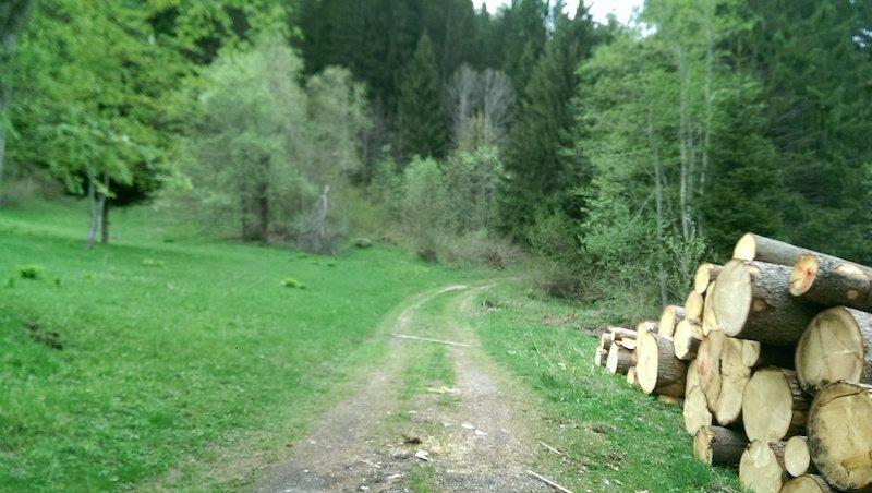 Sentiero della Val Meledrio ti amo trentino