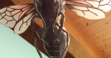 l'ape mmape museo dell'ape ti amo trentino
