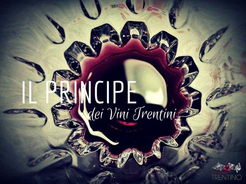 teroldego rotaliano, principe dei vini trentini