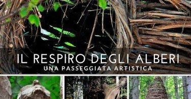 il-respiro-degli-alberi passeggiate artistiche in trentino
