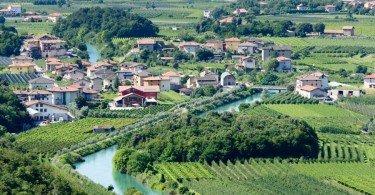 valle dei laghi coltivazione uva