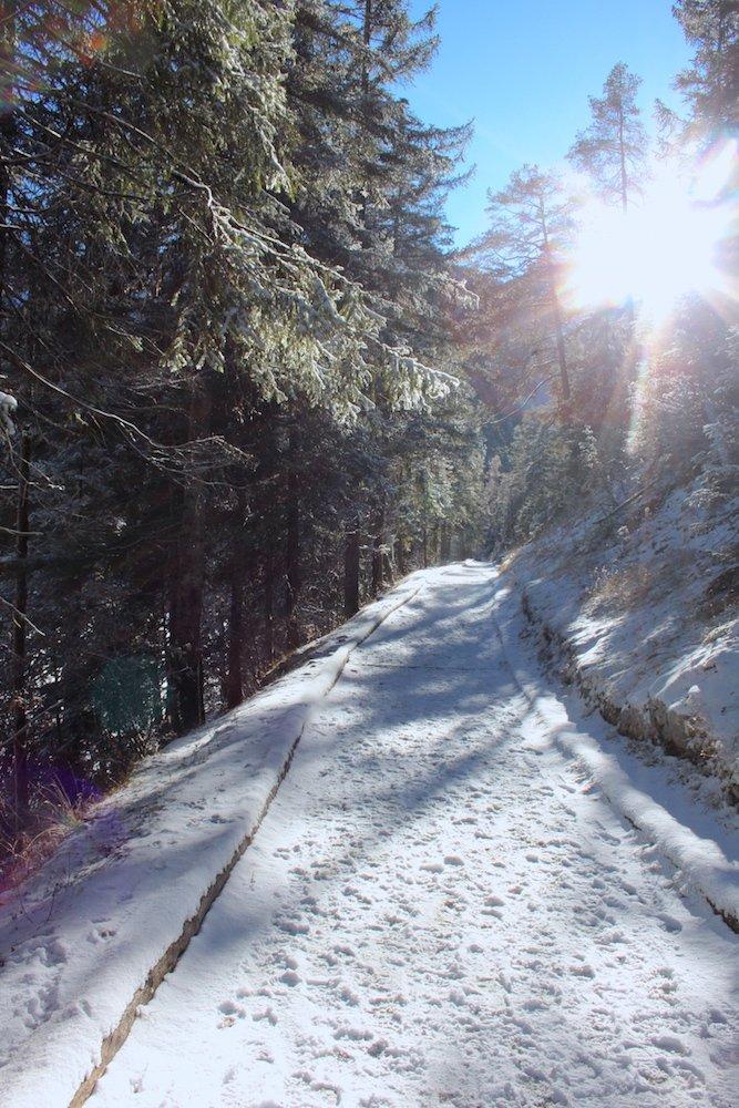 Sentiero lungolago di Lago di Tovel