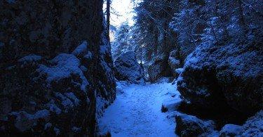 sentiero lungolago al Lago di Tovel in Val di Non