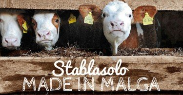 stablasolo-made-in-malga-trentino